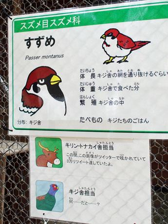 秋田市大森山動物園内「キジ舎」前に掲げられた「スズメ」の解説板