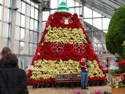 秋田・潟上に「ポインセチアタワー」 クリスマスケーキをイメージ