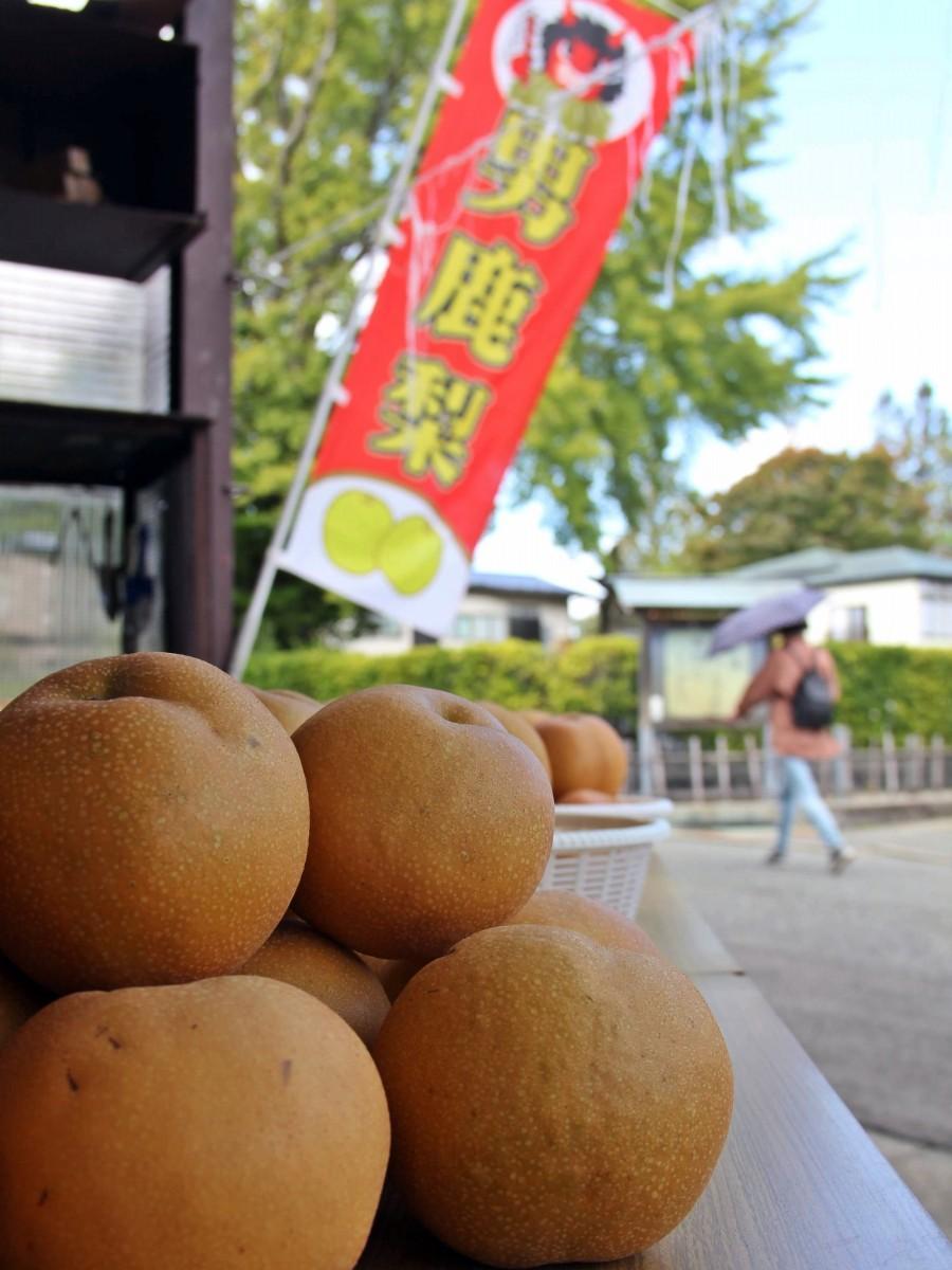秋田市内のすし店店頭で販売される男鹿産のナシ
