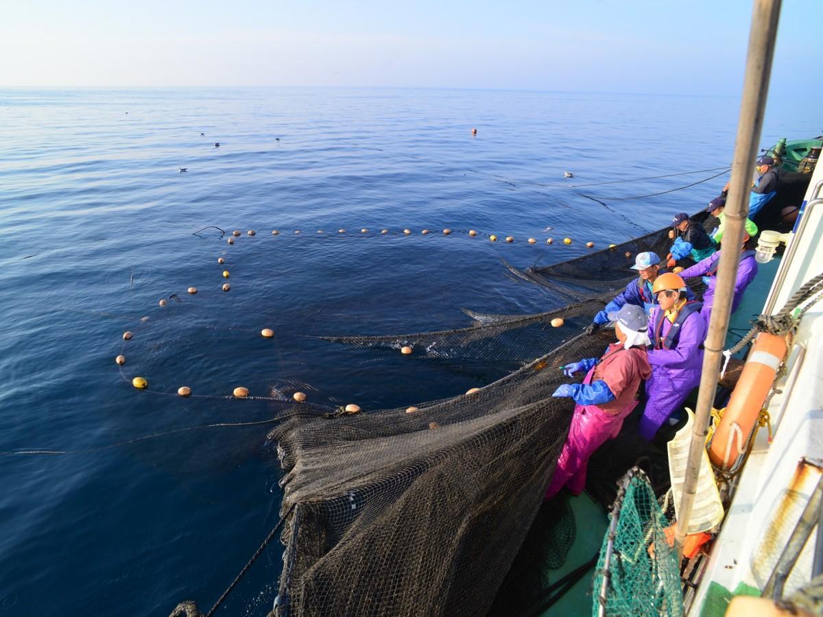 秋田沖で開かれる漁業の様子