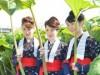 秋田で「蕗刈り撮影会」 「あきた観光レディー」モデルに今年も