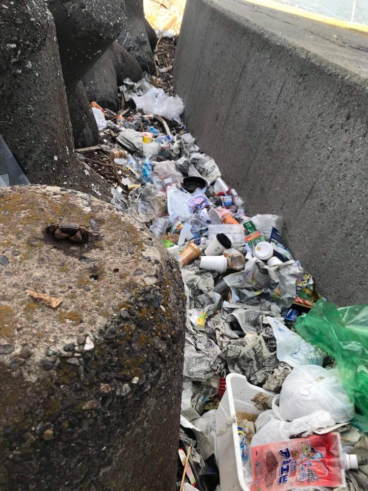 武庫川を漂流して流れ着いたゴミ