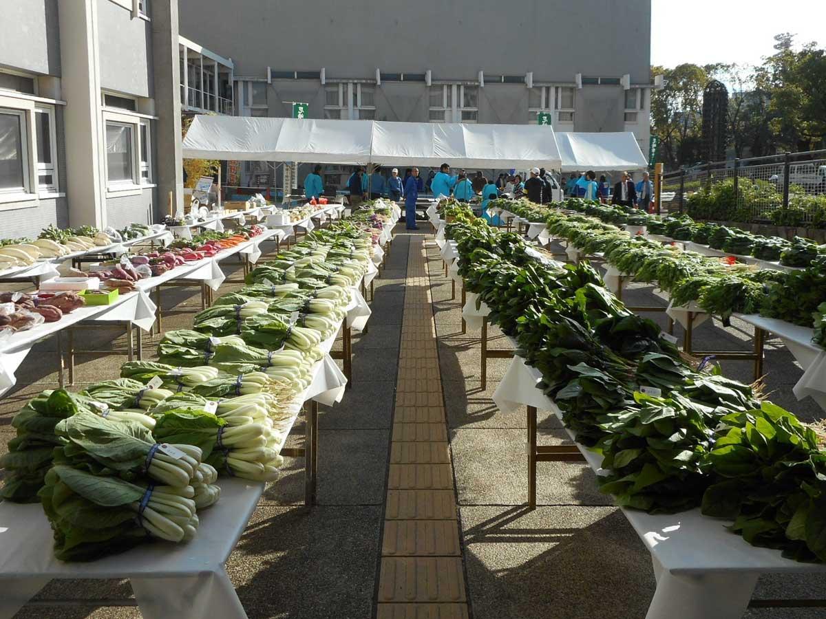 約40種類の市内産野菜が並ぶ「品評会」(昨年の様子)