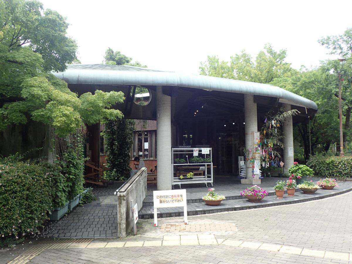 西 上 公園 坂部 『久し振りに、暑い盛りの上坂部西公園へ行きました その1。』尼崎(兵庫県)の旅行記・ブログ