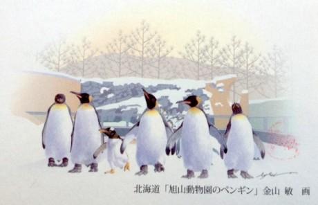 旭山動物園の冬の風物詩「ペンギンの散歩」が描かれた海道地方版年賀はがき