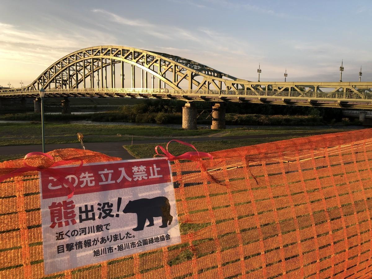 ヒグマの目撃情報があり立入禁止となった旭橋たもとの河川敷