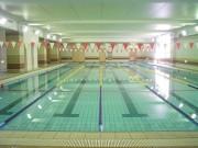 縦25メートル・横11メートル(5コース)、水深1.1メートル、中央最深で1.3メートルの温水プール