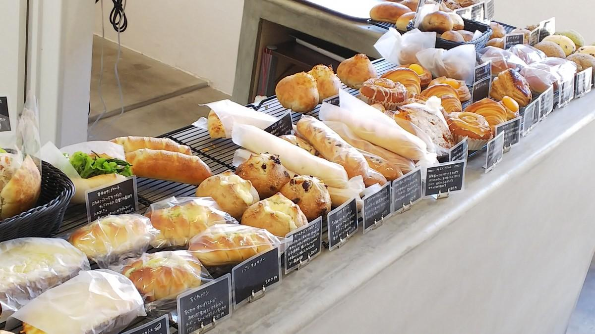 カウンターに並ぶパン。1日に50種類のパンが並ぶ