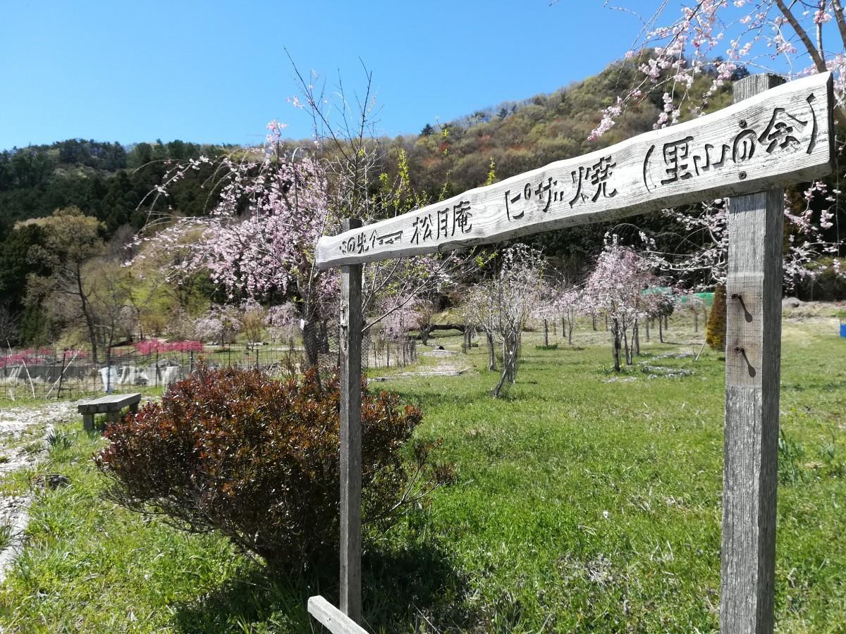 ピザ窯までの散策路。植樹も道も、名草里山の会が作り上げたもの。