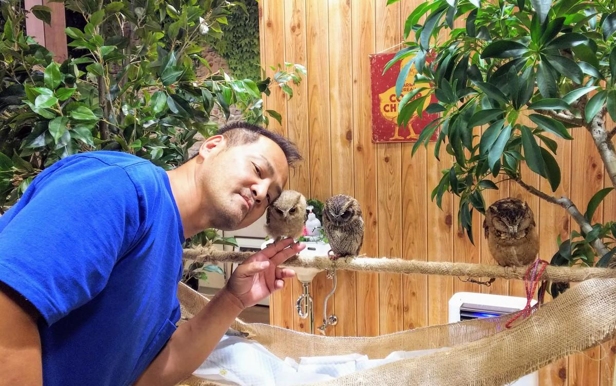 フクロウのひなを手に載せる店主の嶋田さん