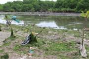 インドネシア、レジ袋の有料化へ ゴミ問題解決が課題