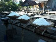 バリ島の伝統的な塩田で塩作りが最盛期迎える