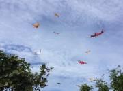 バリ島各地で伝統の大規模「たこ揚げ」大会