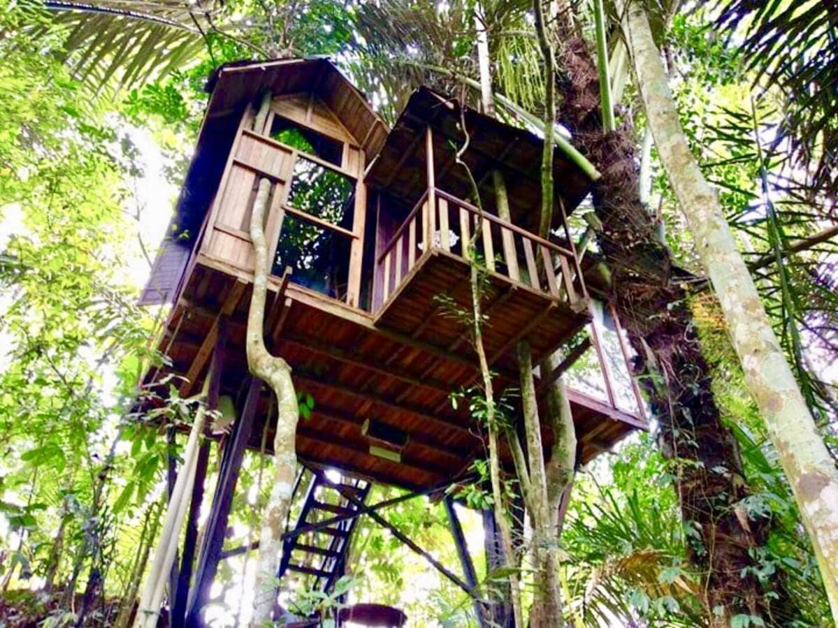 180度ジャングルビュー「hars garden tree houses 」