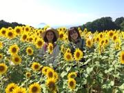 タイのテレビ局で旅番組「九州特集」 熊本復興もアピール