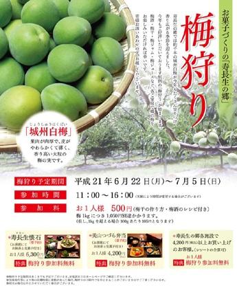 寿長生(すない)の郷で行われる「梅狩り」パンフレット