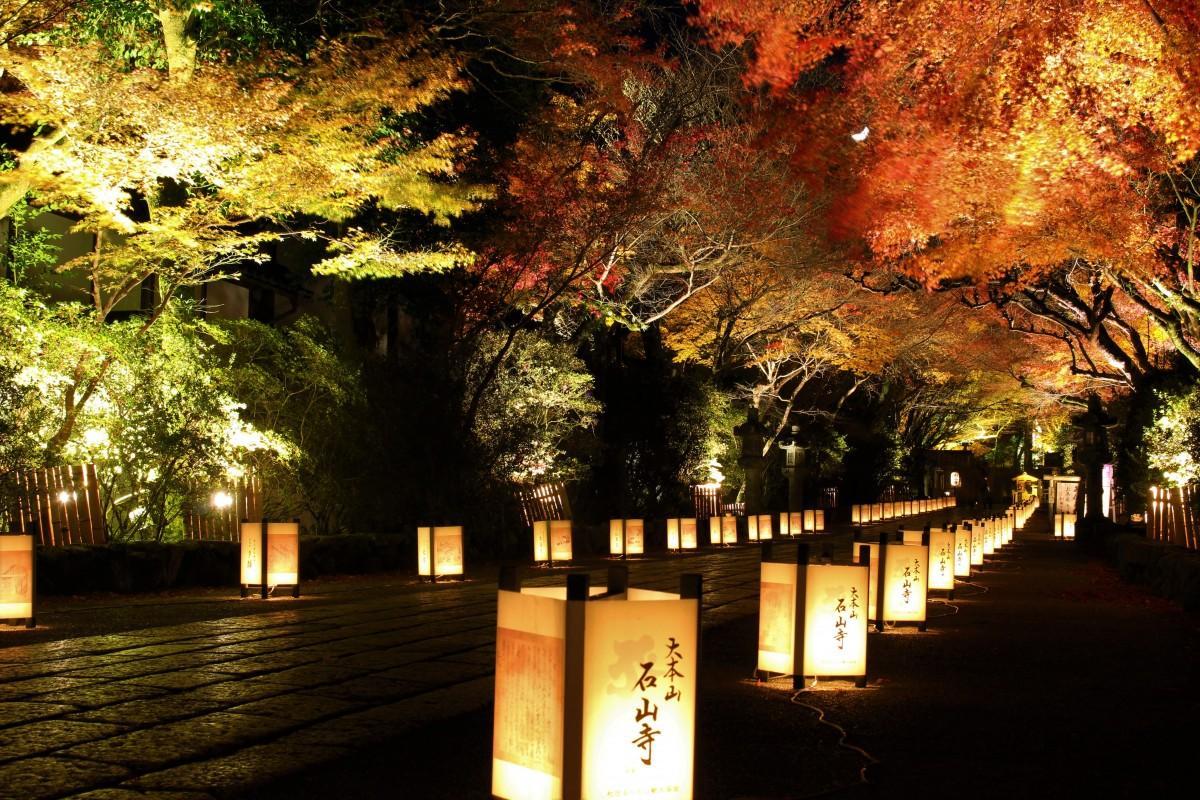 ライトアップされた石山寺