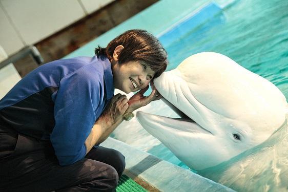 獣医師の勝俣悦子さん