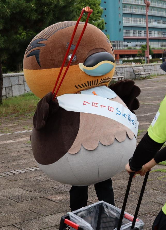 琵琶湖岸のごみを拾う「野洲のおっさんカイツブリ」