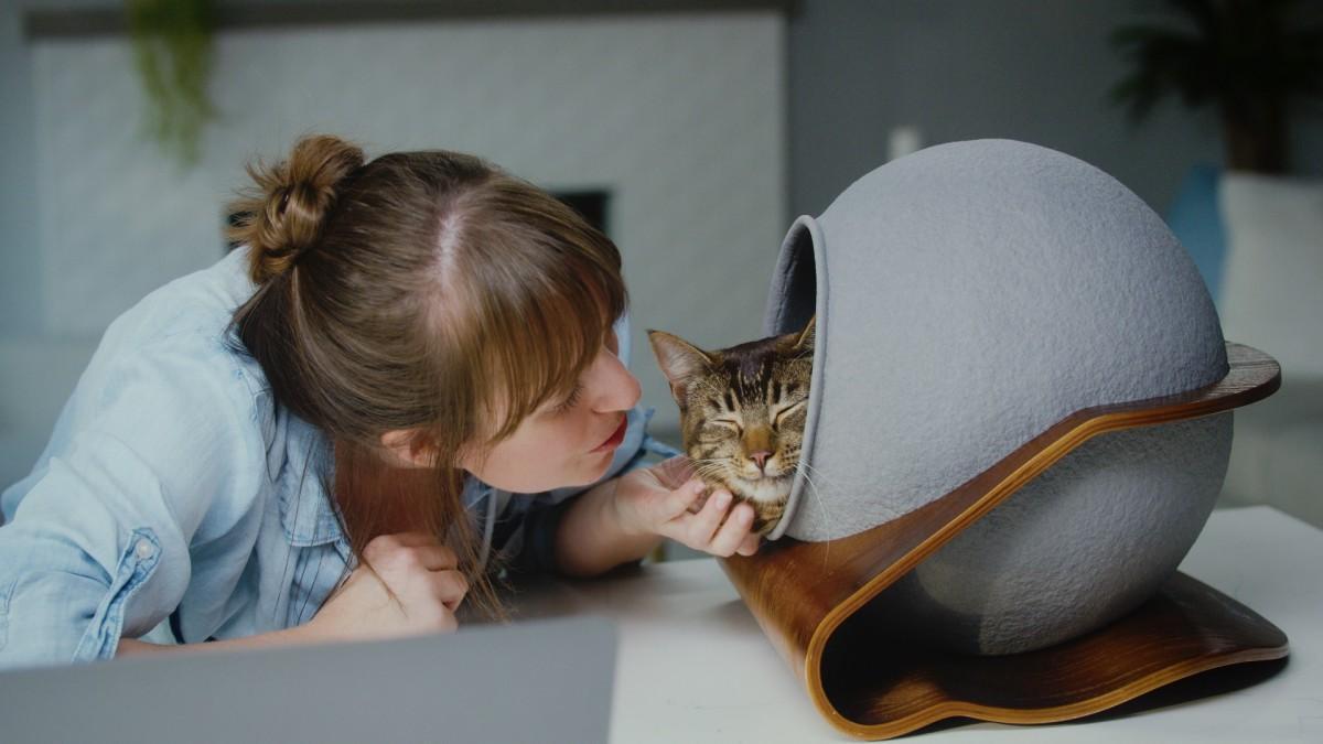 洗濯機で丸洗いできる猫用ベッド「キャットソル」