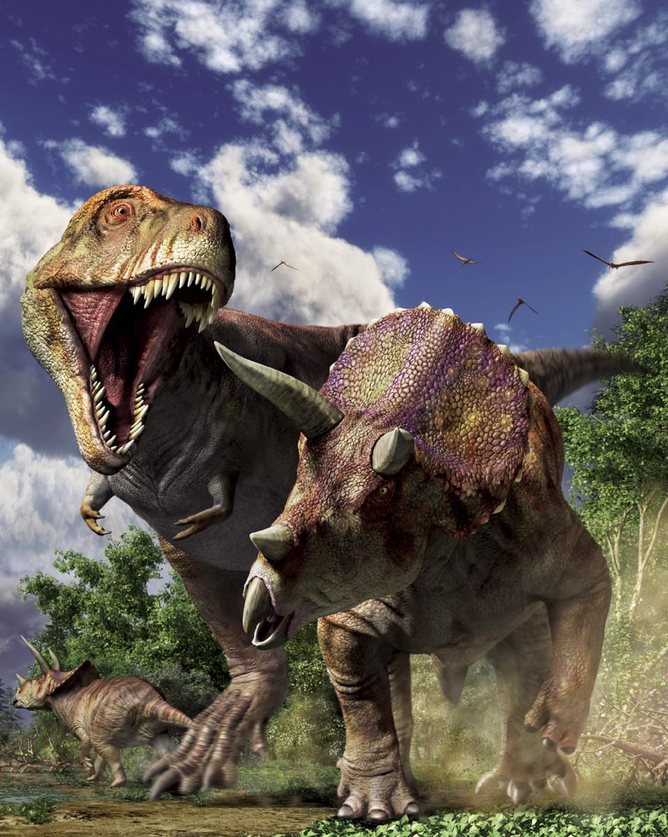 ティラノサウルスVSトリケラトプス 復元画:月本佳代美