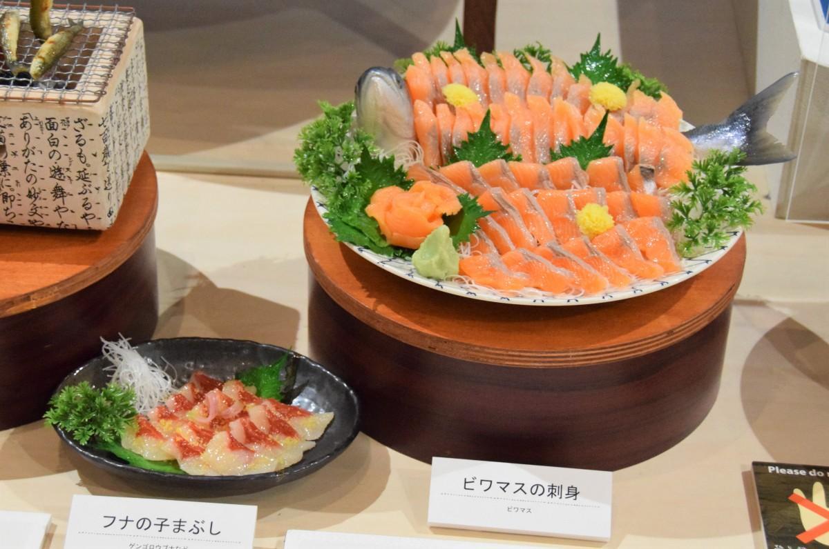 ビワマスの刺身など琵琶湖の魚料理の模型