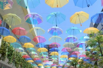 梅雨空に傘380本 草津で「アンブレラ・パティオ」