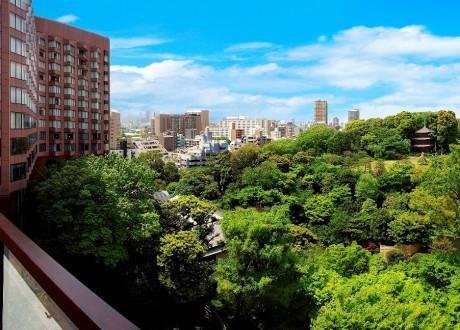 空中庭園からの景色