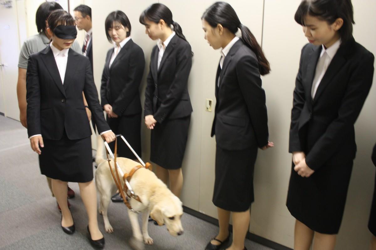 内定者による盲導犬体験