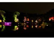 千葉市幕張海浜公園の見浜園で「灯ろうまつり」 紅葉をライトアップ