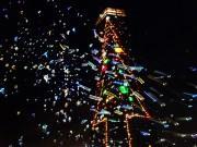 千葉ポートタワーで恒例クリスマスツリー 今年はシャボン玉の演出も