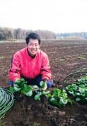 千葉市の畑でまるかじり体験 小松菜を生から鍋まで3通り味わう