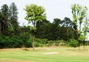 千葉市民ゴルフ場