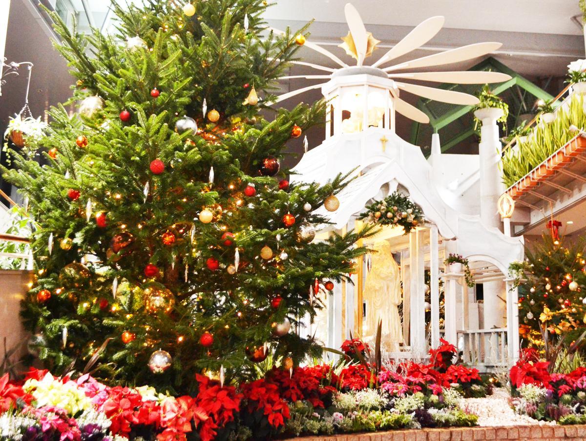 フローラルクリスマスのチャペル