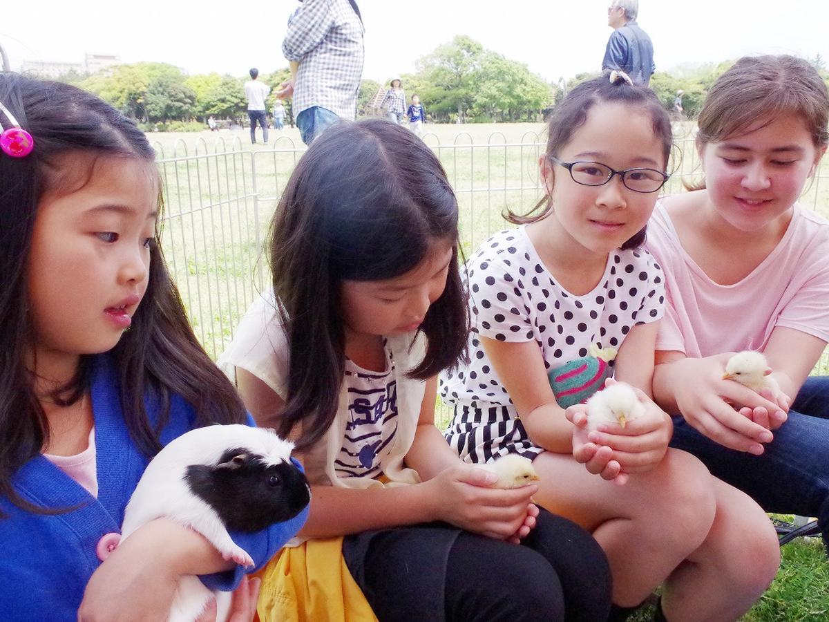 動物と触れ合う子どもたち