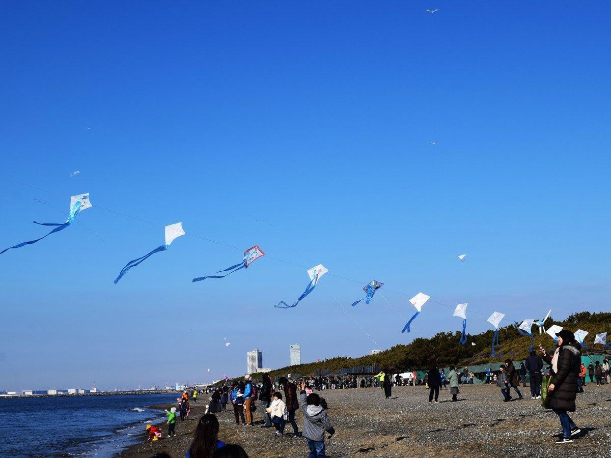 浜辺の空を舞うたこ(昨年の様子)