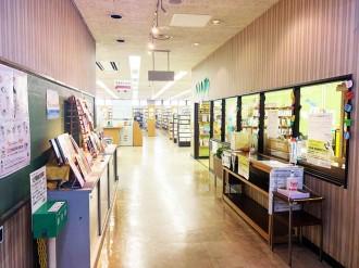 千葉市図書館が電子書籍サービス開始 来館控え自宅で読書を