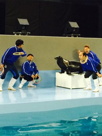 みょーちゃん、ラジバンダリ西井、お笑いコンビ「ワンワンニャンニャン」の菊地正志さんと福井修一さんが公演に向けてトレーニングする様子