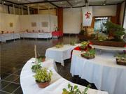 調布・神代植物公園で「正月開園と初春の催し」 ラン専門家・齋藤亀三さん講演会も