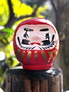 調布・深大寺で「日本三大だるま市」 お練り行列や百味供も