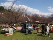 調布・野川公園で春の日まつり 出張カフェやワークショップ、ガイドツアーも