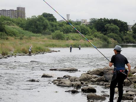 アユ釣り解禁日の多摩川、釣りの様子