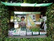 調布市内の野菜直売スタンドにぎわい 生け垣に埋め込んだユニークなスタンドも