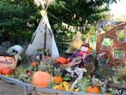 調布の欧風庭園「アンジェ」でハロウィーン ランタン作りや仮装パーティーなど
