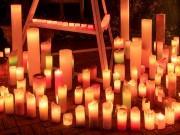 調布の欧風庭園アンジェでクリスマスイベント ツリー点灯式やコンサートなど