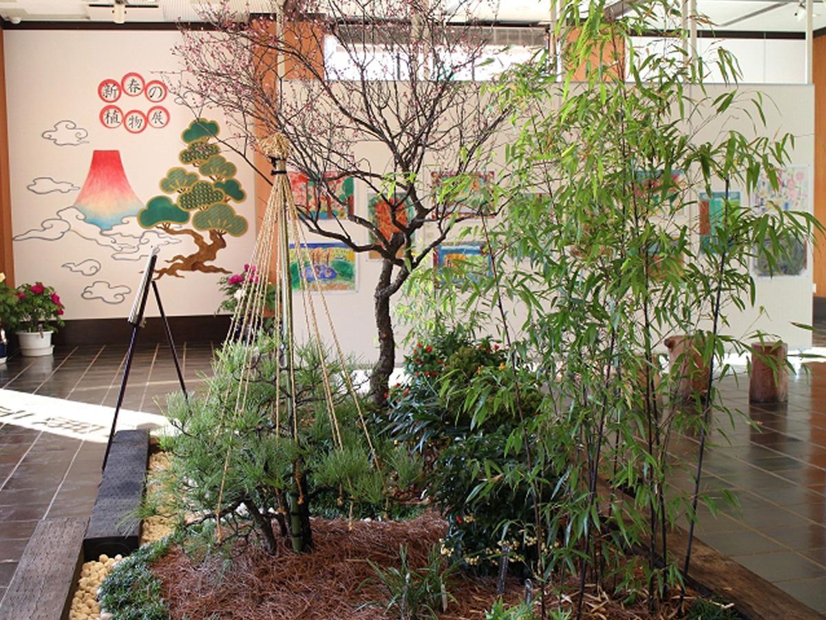 調布・神代植物公園で新春を祝う展示 雪づりなど冬の風物詩も
