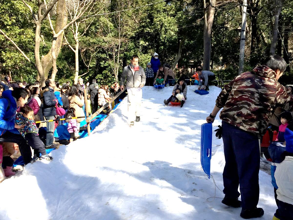 調布・深大寺で雪遊びイベント 昨年は2時間待ち「雪のすべり台」今年も