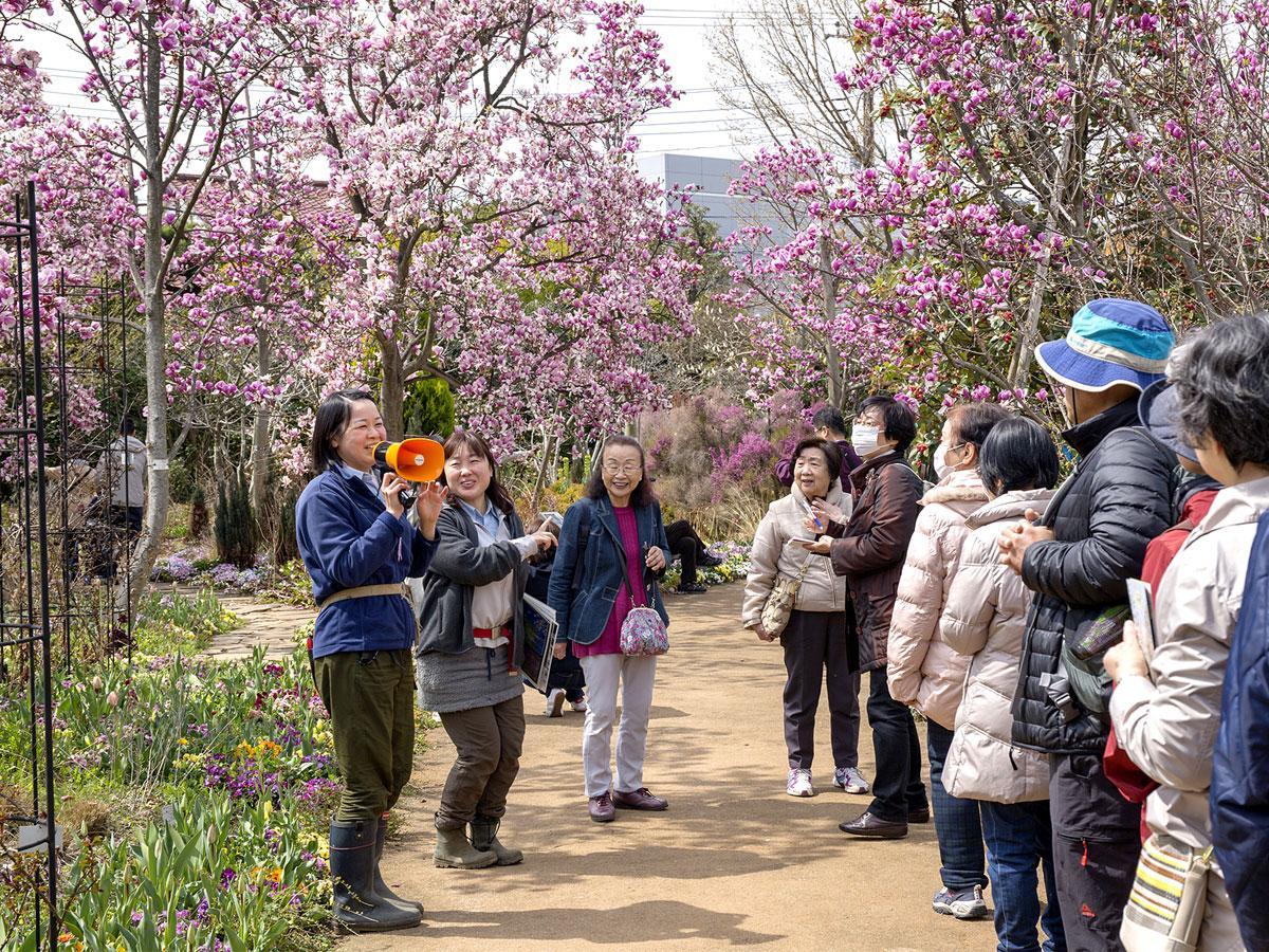 京王フローラルガーデン「アンジェ」ガーデナーによる「記念感謝祭ガーデン見学ツアー」