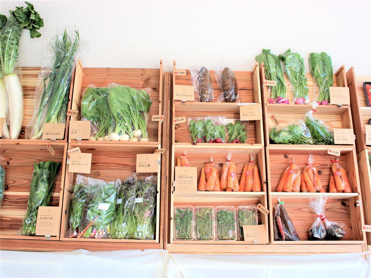「SNSN(シンセン)」の野菜棚