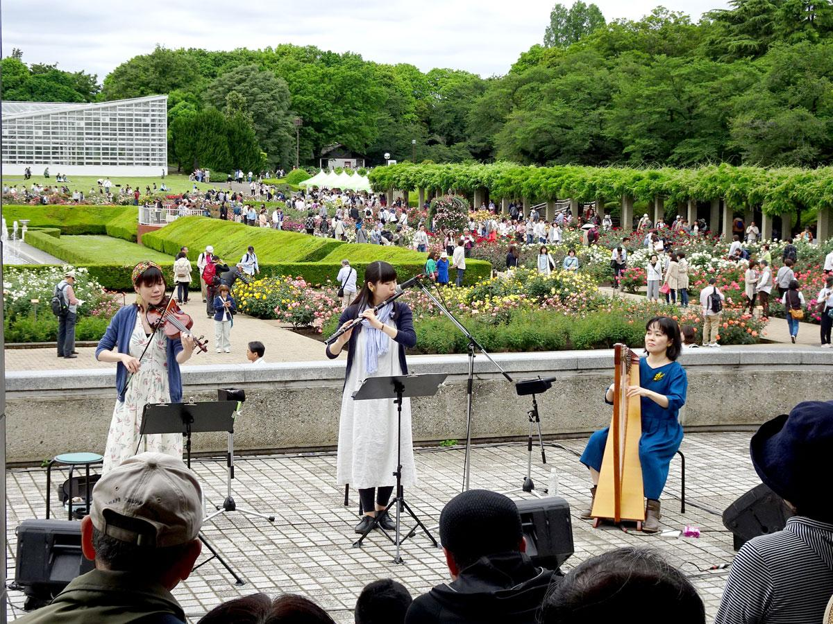 昨年の「ばら園コンサート」の様子